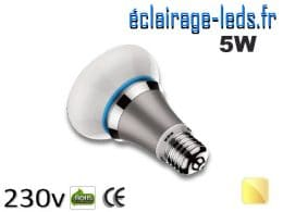 ampoule led e27 queen 5w blanc chaud