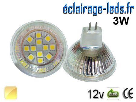 Ampoule LED MR16 12 led blanc chaud 12v 60°
