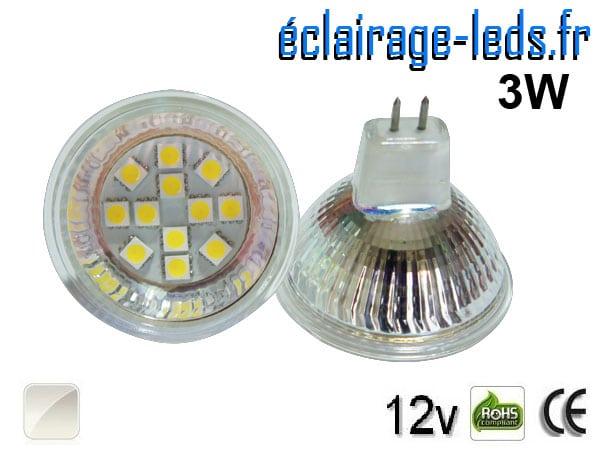 Ampoule LED MR16 12 led blanc naturel 12v 60°