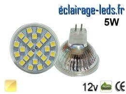 Ampoule LED MR16 24 led blanc chaud 12v