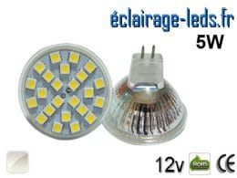 Ampoule LED MR16 24 led blanc naturel 12v
