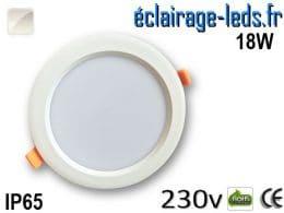 Spot LED 18W Blanc naturel IP65 230v