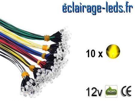 Lot de 10 LEDS jaunes câblées 12v DC