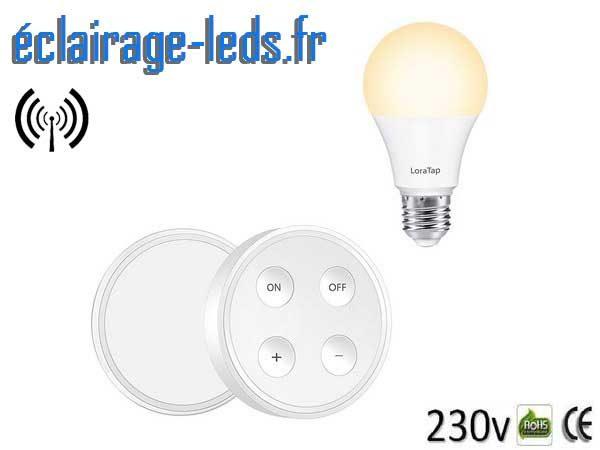 Ampoule led E27 10w température réglable dimmable sans fil