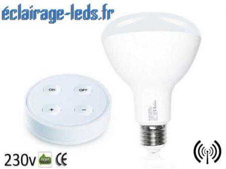 Ampoule LED E27 12W Température pilotable