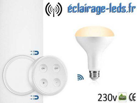 Ampoule LED E27 12W Luminosité & Température pilotable 1