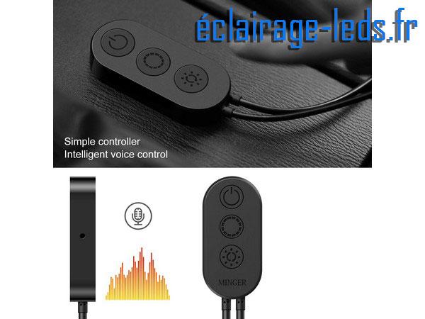 Bandeau LED RGB 5m éclairage d'ambiance + Micro Intégré