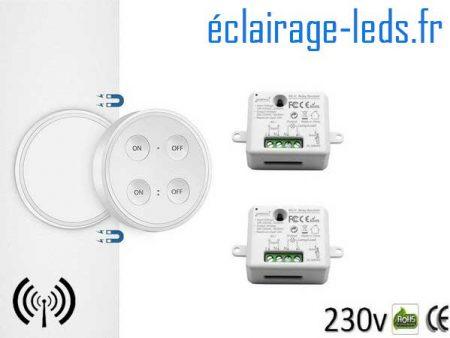 Kit double interrupteur sans fil RF avec émetteur