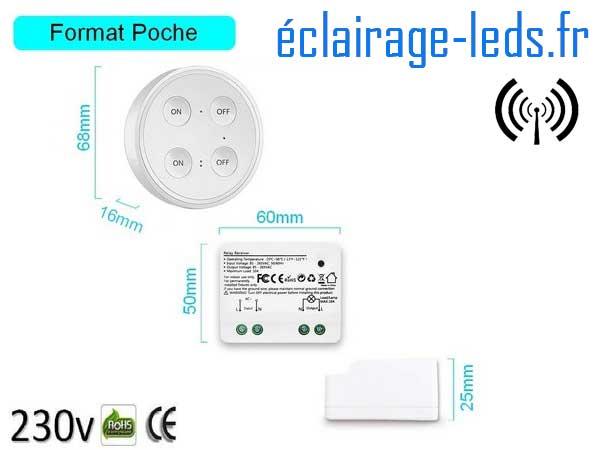 Kit double interrupteur sans fil RF + 1 émetteur 200m 2500w 2