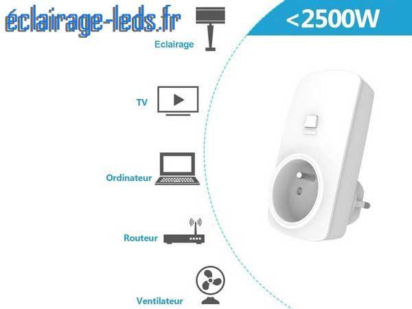 Kit de 2 prises de courant télécommandées Sans Fil 2500w 1