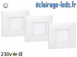 kit support LED Blanc Sol et Mur blanc froid 1W 230v