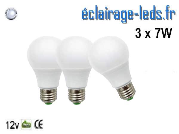 3 ampoules LED E27 7W Blanc froid 12v DC