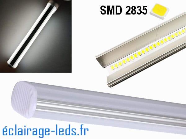 Lot de 2 ampoules LED G23 6W blanc froid IP20