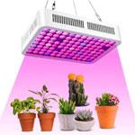 éclairage LED horticole